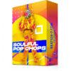 """Pop Vocal Chops (EDM, Pop Vocal Samples) """"Soulful Pop Vocal Chops"""""""